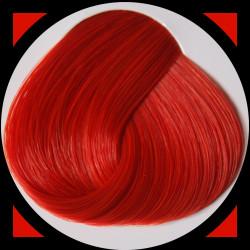 TANGERINE teinture cheveux LaRiché