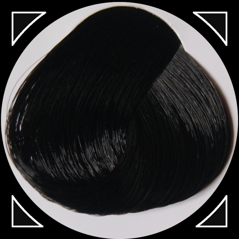 EBONY teinture cheveux LaRiché