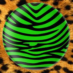 Zebre Vert