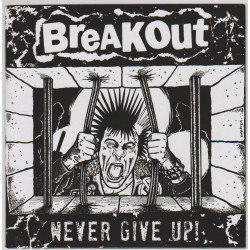 "Breakout ""Never Give Up"" Vinyl EP 2013"