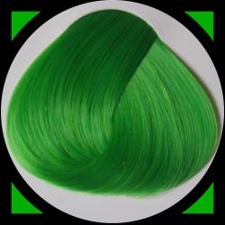 SPRING GREEN teinture cheveux LaRiché