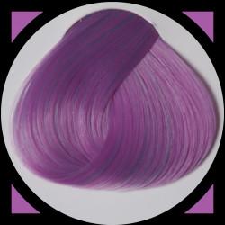 LAVENDER teinture cheveux LaRiché