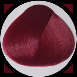 TULIP teinture cheveux LaRiché
