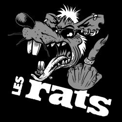 Les RATS visuel