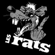 ANARTISANART Les mauvais garcons font bonne impression LES RATS