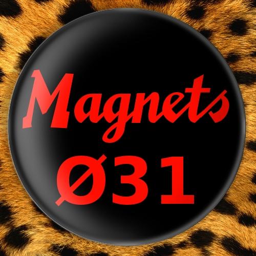 Magnets Ø31mm